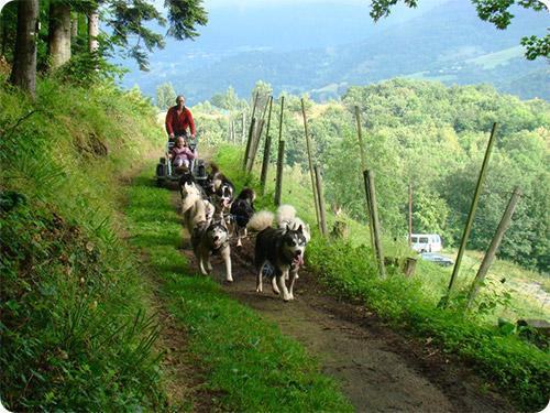 Tourisme et handicap en Alsace