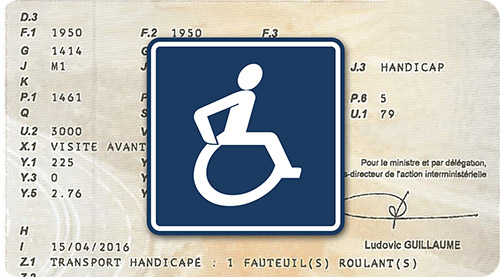 carte_grise_handicap_small